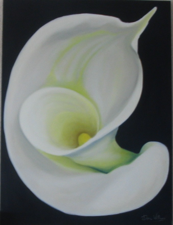 D.Williams calal III-oil on canvas 30x40.jpg