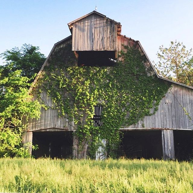 still my favorite barn in town!  #barn #countryliving