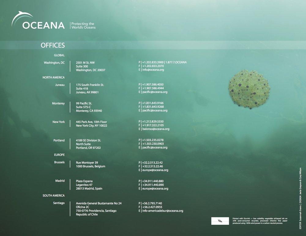 oceana_annualreport_high13.jpg