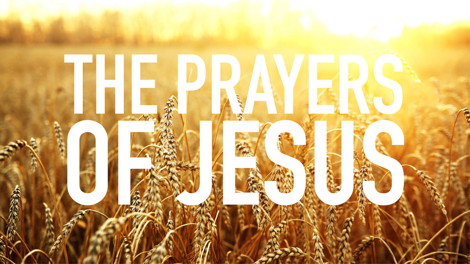Jul  7th, 2019   The Prayers of Jesus — theRefuge Church
