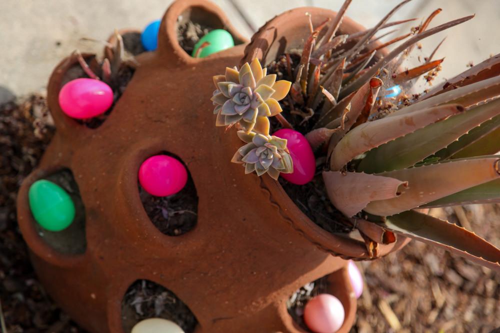 FPVV Easter 005.jpg