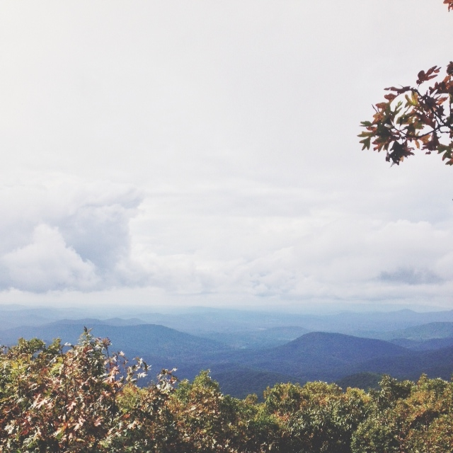 View from the summit of Springer Mountain