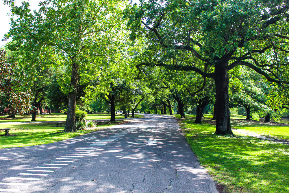 Audubon Park | New Orleans Travel Guide