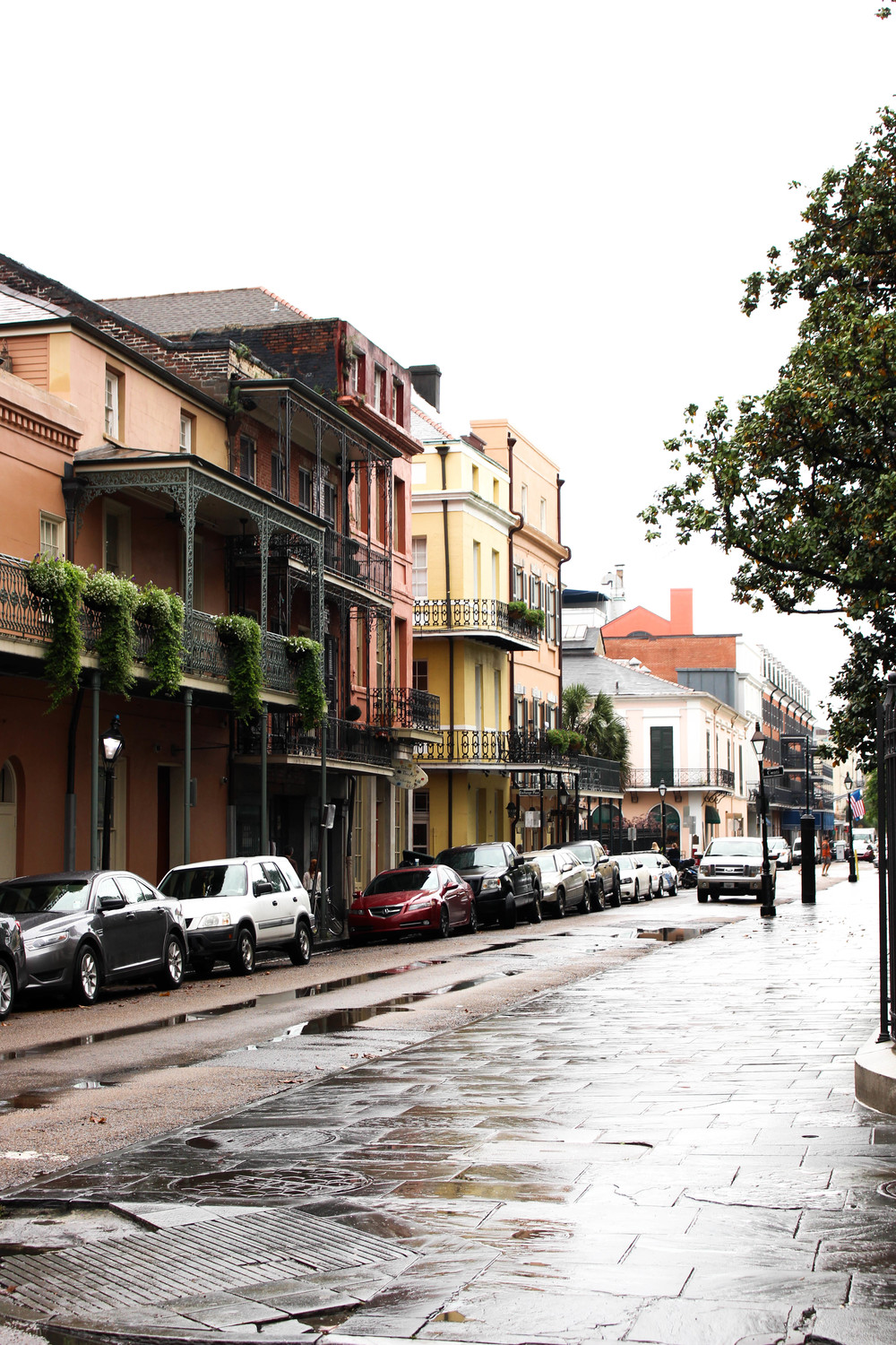 New Orleans Travel Guide | The Gallivant Blog