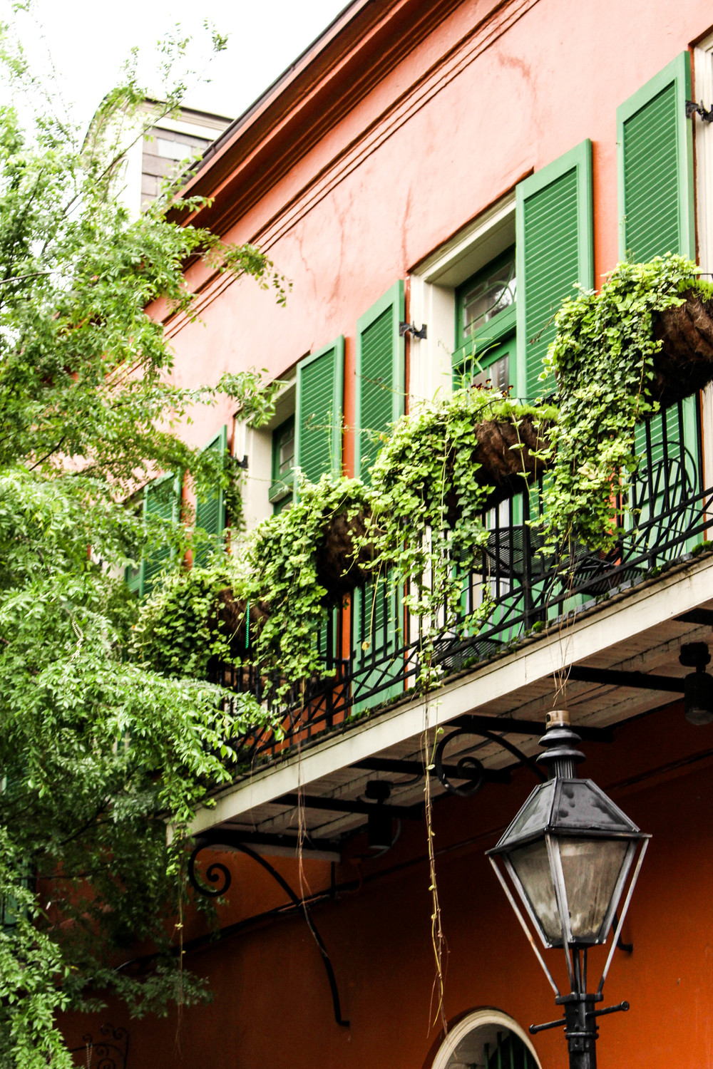 New Orleans Travel Guide | The Gallivant