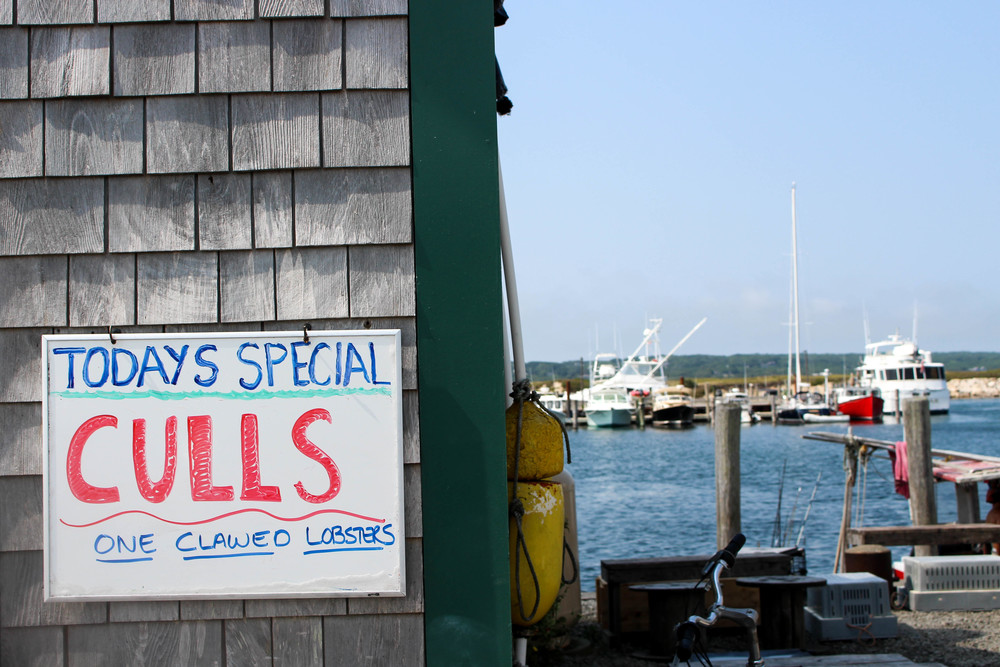 Larsen's Fish Market | Martha's Vineyard | The Gallivant