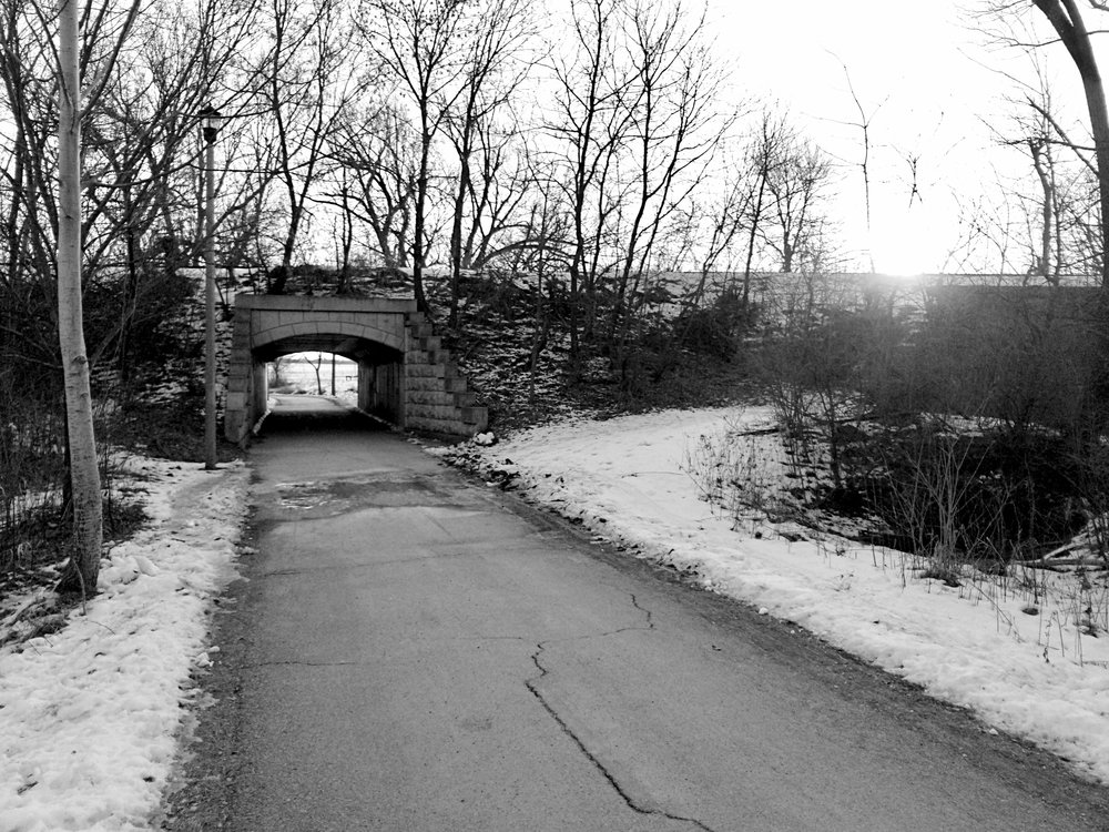 Tunnel. Wingra Path. Madison, Wisconsin. February 2017. © William D. Walker