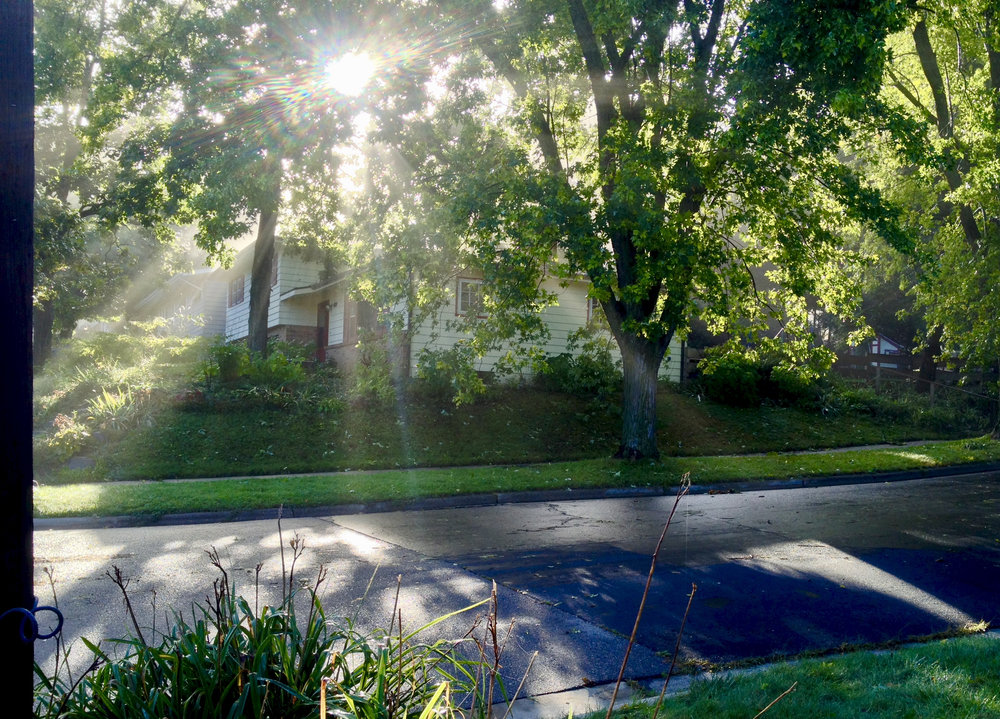 Morning Sun. Madison, Wisconsin. September 2016. © William D. Walker