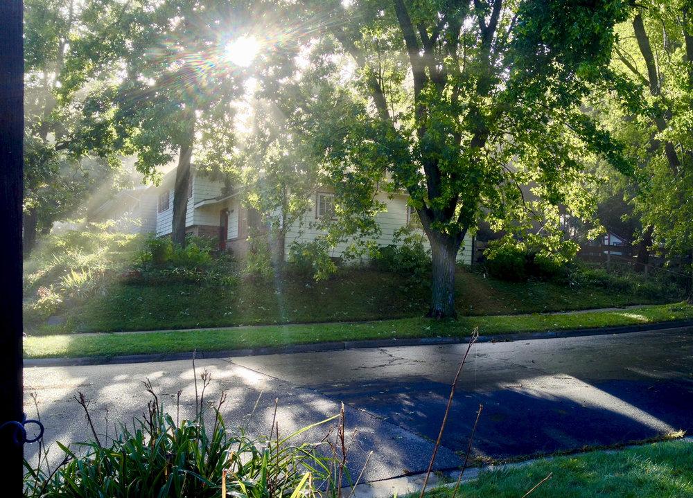 Morning Sun. Madison, Wisconsin. September 2016. © William D. Walker