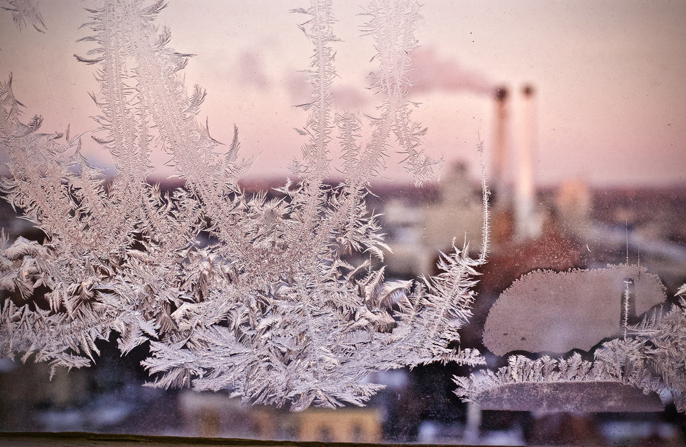 Frosted Glass. Place. Madison, Wisconsin. Month Year. © William D. Walker