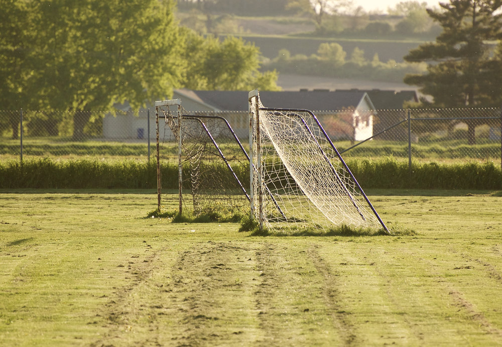 Soccer Webs. Stoner Prairie. Madison, Wisconsin. May 2017. © William D. Walker