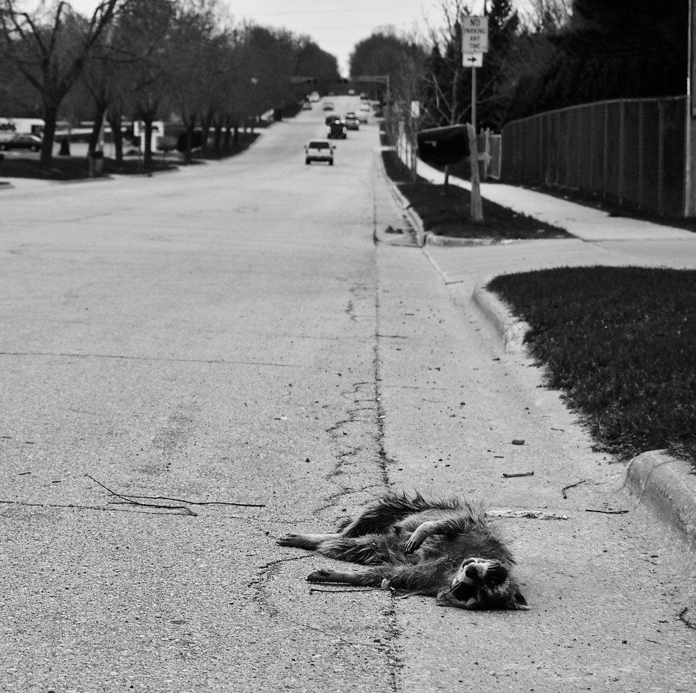 Left Behind. Vondron Road. Madison, Wisconsin. April 2011. © William D. Walker