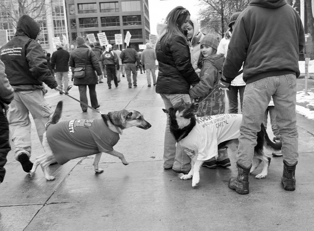 Solidarity. Capital Square. Madison, Wisconsin. March 2011. © William D. Walker