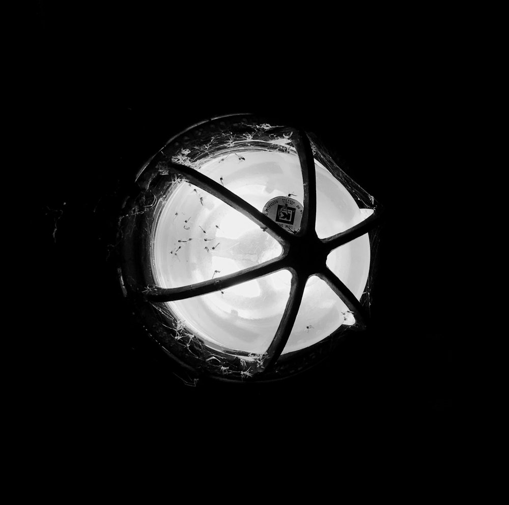 Tunnel Light. MMSD. Madison, Wisconsin. February 2018. © William D. Walker