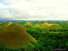 Bohol.png