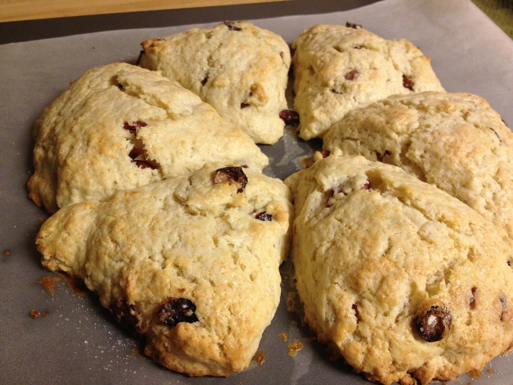 Cream Scones + Currants