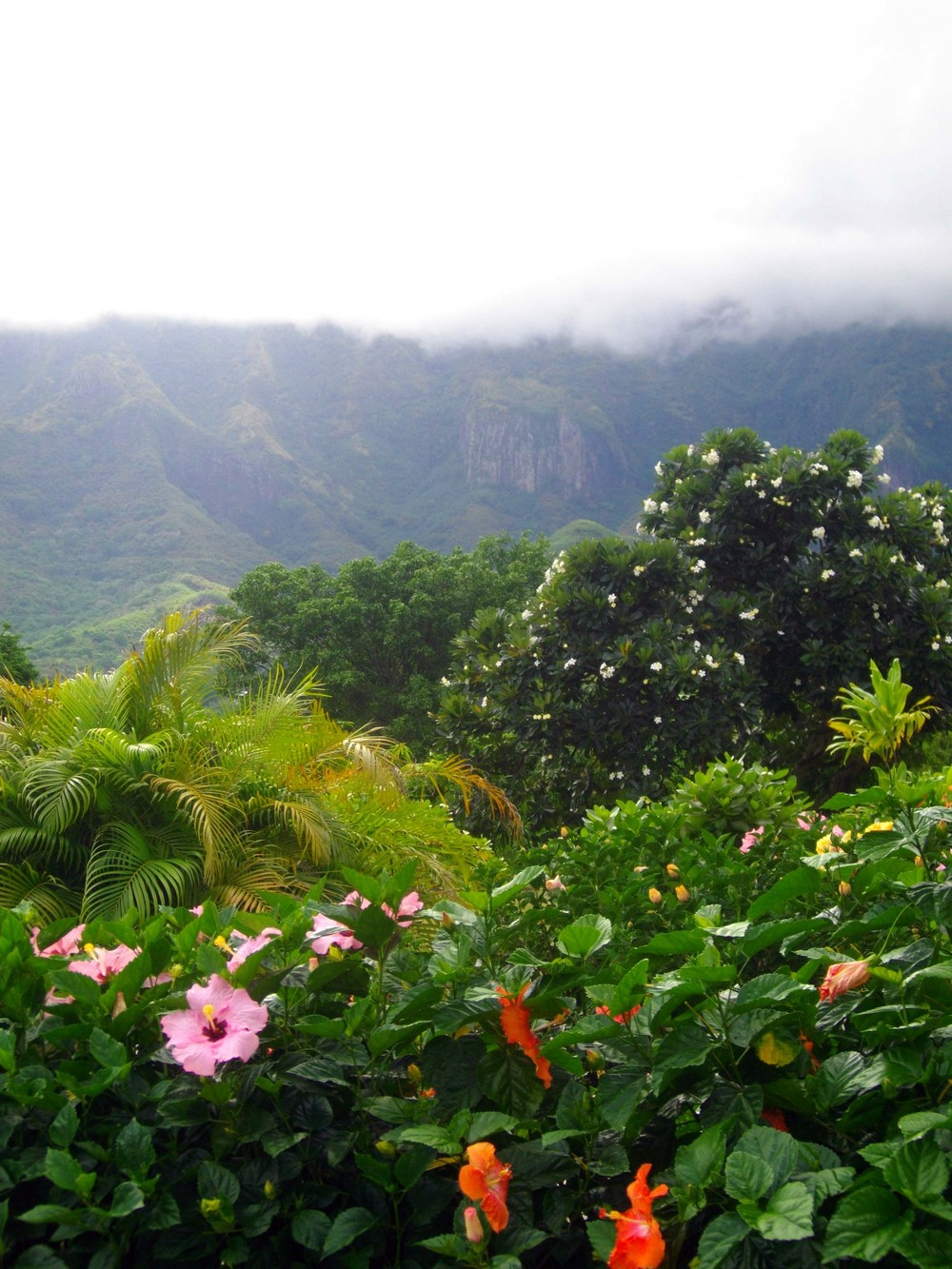 Clouds roll in over the view from the pension garden. The beauty of Nuku Hiva made the trials of the crossing quickly fade.