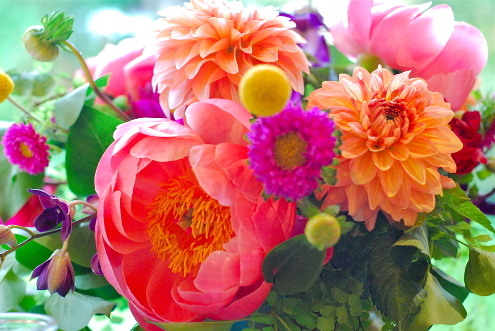 Stunning floral arrangement of dahlias and peonies by Allison of Bramble Floral Design in Portland, OR