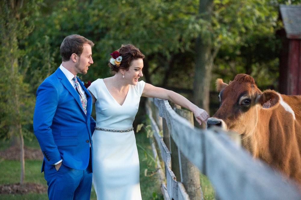 Jennifer and Matt Rocklands Farm Maryland Wedding Molly M Peterson Photography_52.JPG
