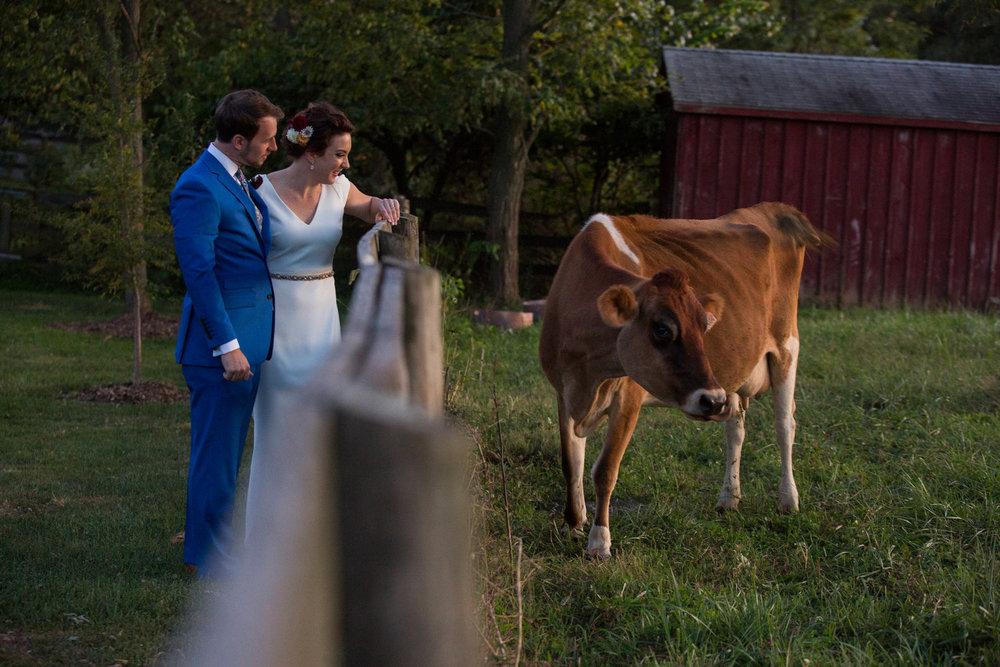 Jennifer and Matt Rocklands Farm Maryland Wedding Molly M Peterson Photography_53.JPG