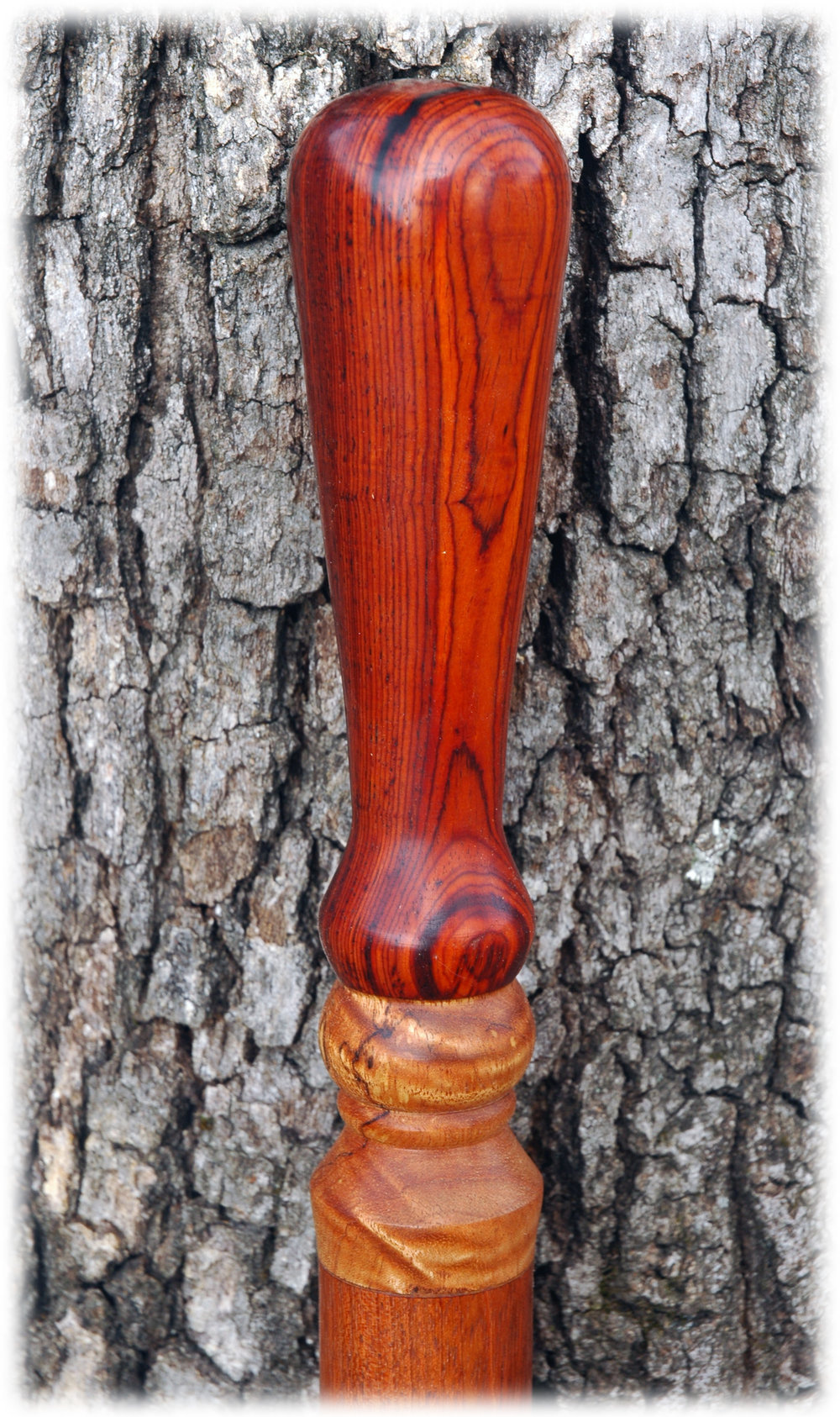Cocobolo on Jatoba with Olive