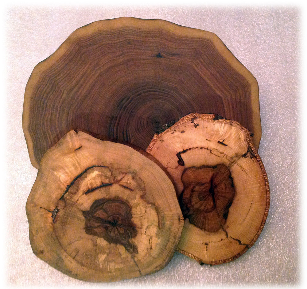 Natural Rounds <p><font size=-4>Unknown Wood</font></p>