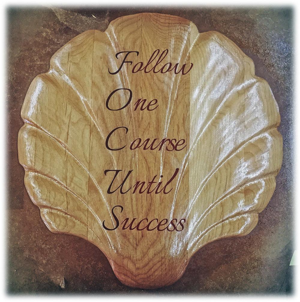 Follow one course.jpg