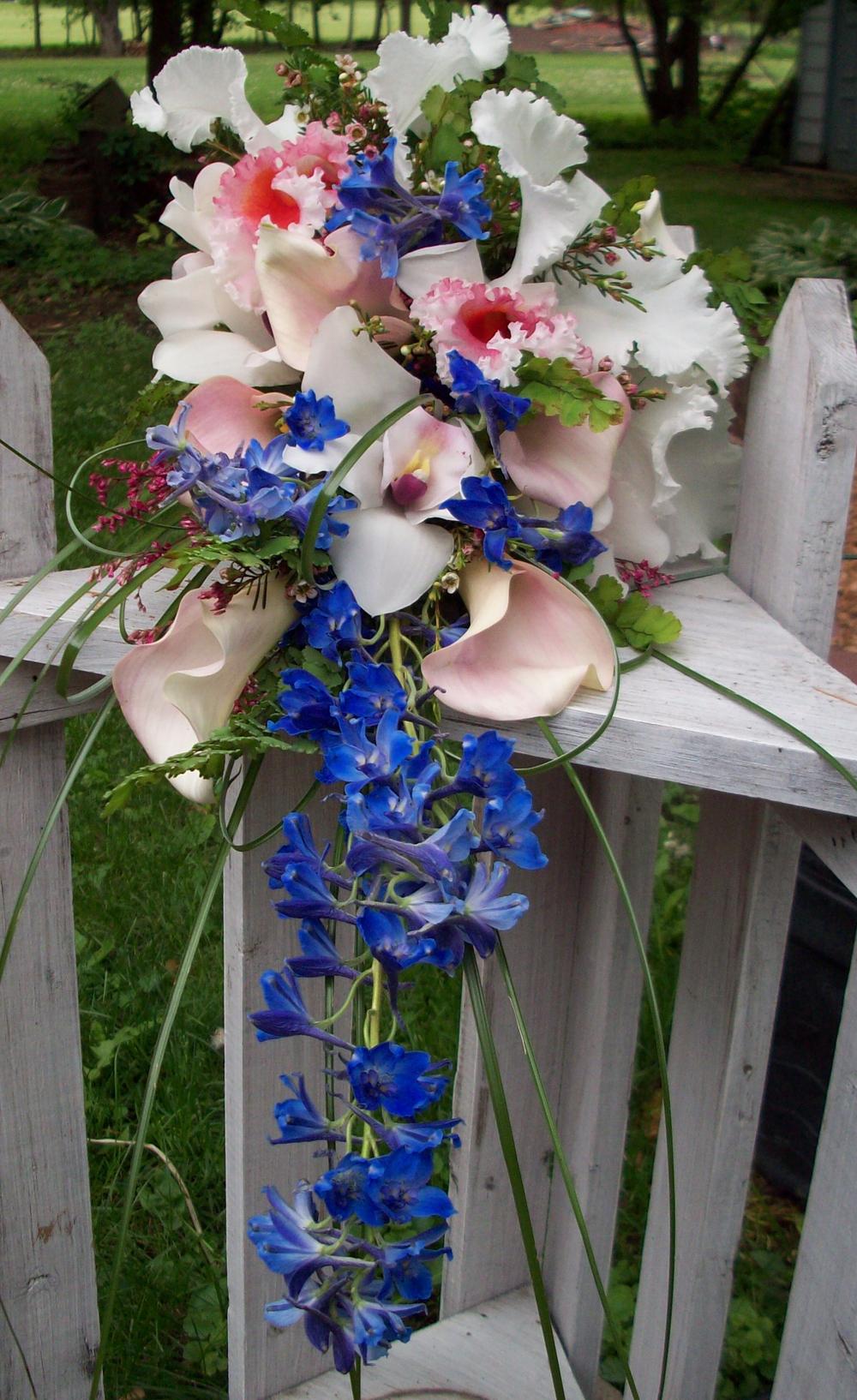 bridal_sweep.jpg