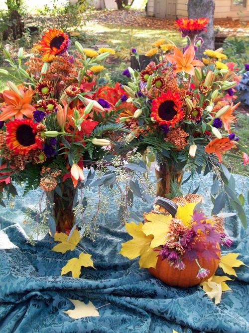 red_sunflowers.jpg