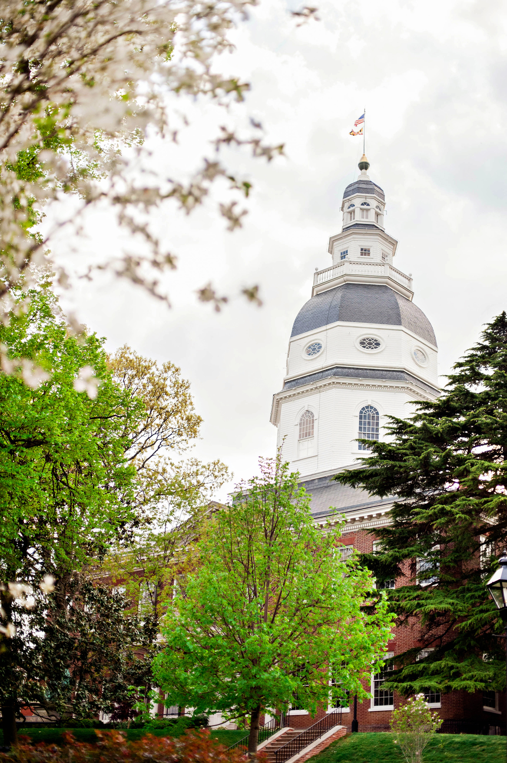 Annapolis, MD Photos