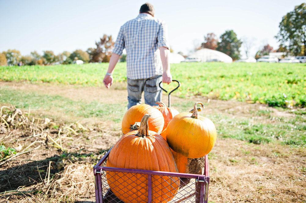 Family Photos Fall Harvest Pumpkin Patch www.jleeblog.com