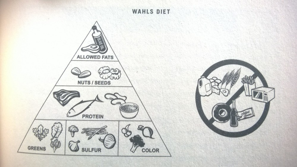 phone photo from the book 'The Wahls Protocol'