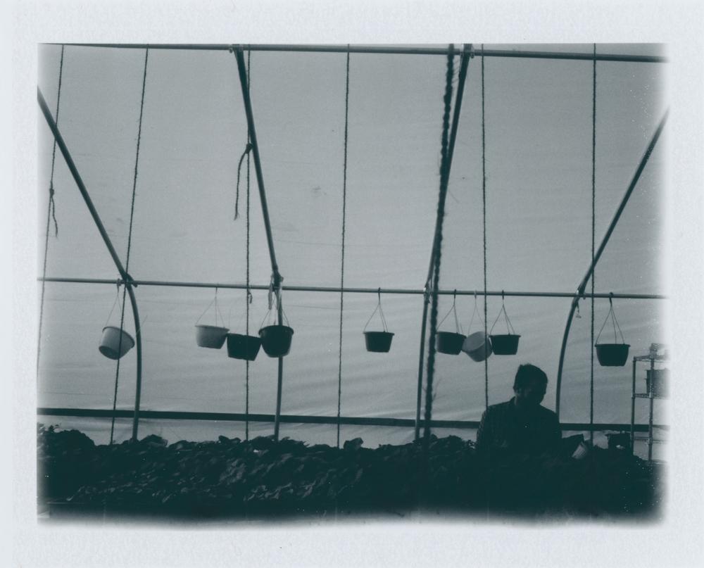 Untitled (11)-2.jpg