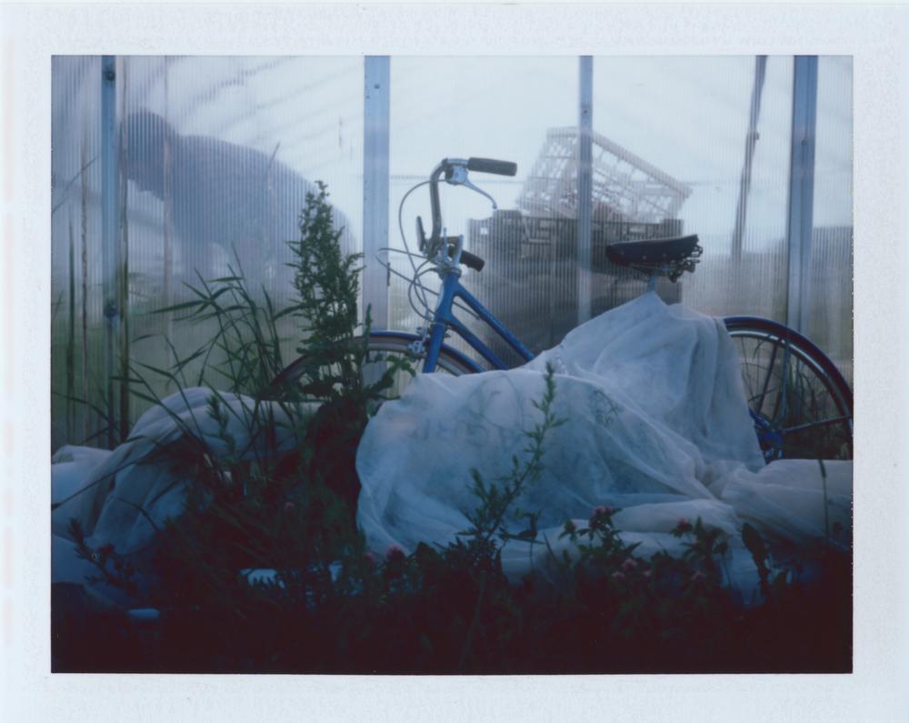 Untitled (20)-2.jpg