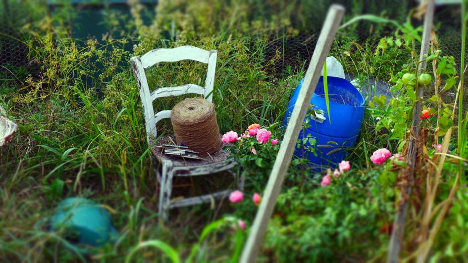 chair - twine - roses - garden levat.jpg