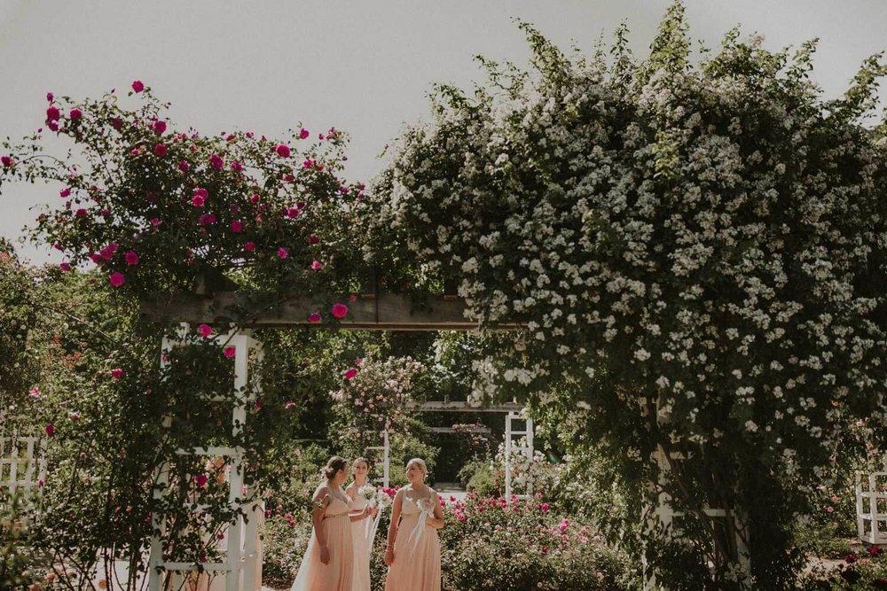 canberra-wedding-rose-gardens_047(4128).jpg