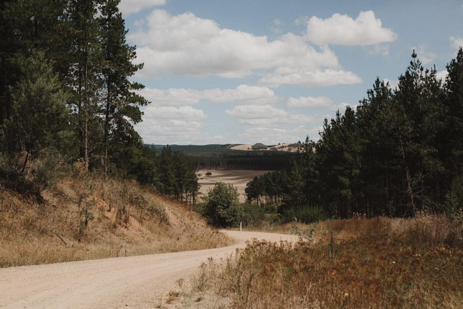 suger-pine-walk-wedding (Corinna & Dylan)_001(0181).jpg