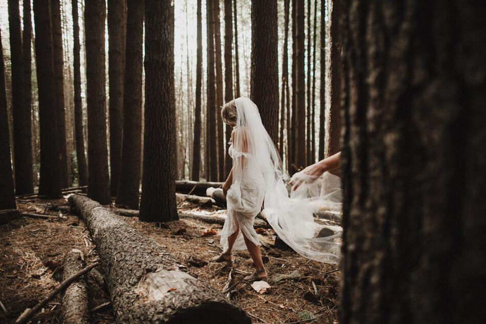 suger-pine-walk-wedding (Corinna & Dylan)_150(2975).jpg