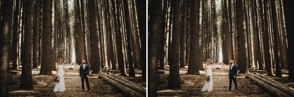 suger-pine-walk-wedding (Corinna & Dylan)_161(2081)2.jpg
