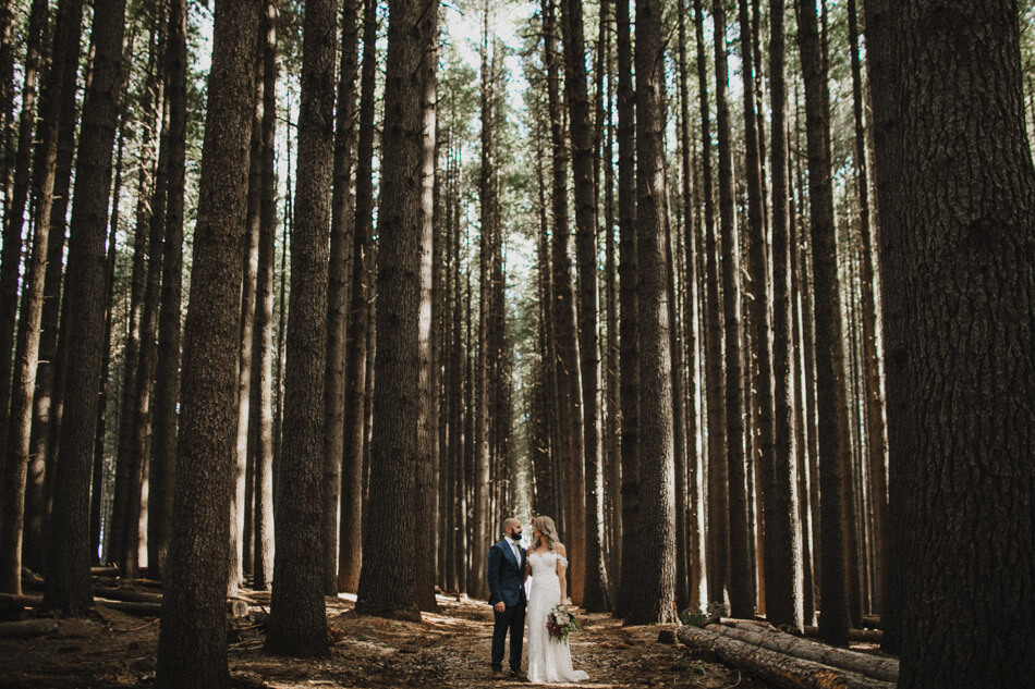 suger-pine-walk-wedding (Corinna & Dylan)_163(2092).jpg