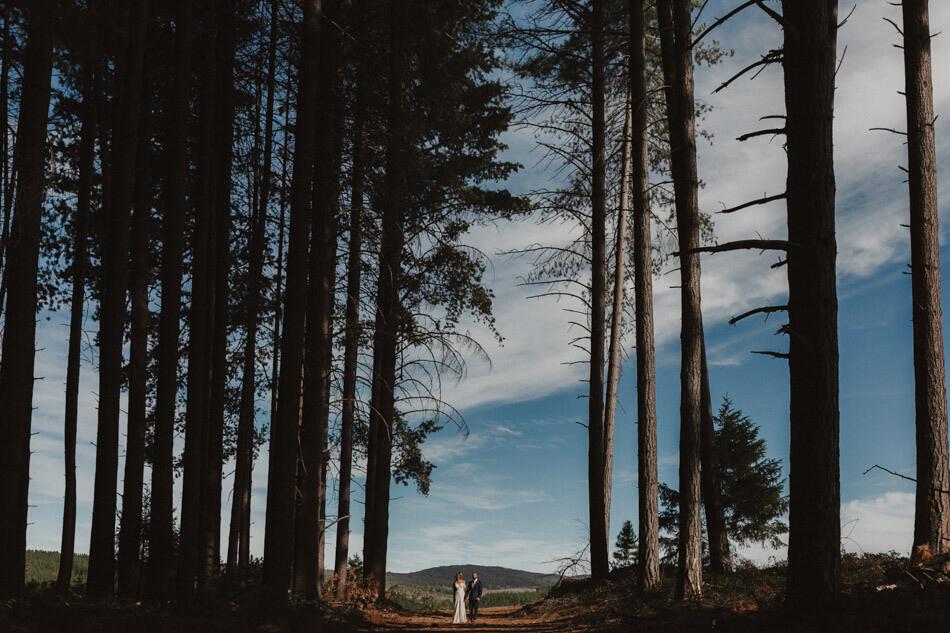 suger-pine-walk-wedding (Corinna & Dylan)_175().jpg