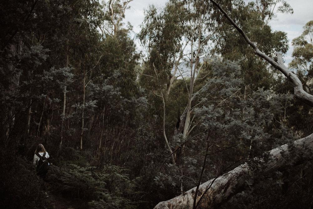 booroomba-rocks-engagement_004(0014).jpg
