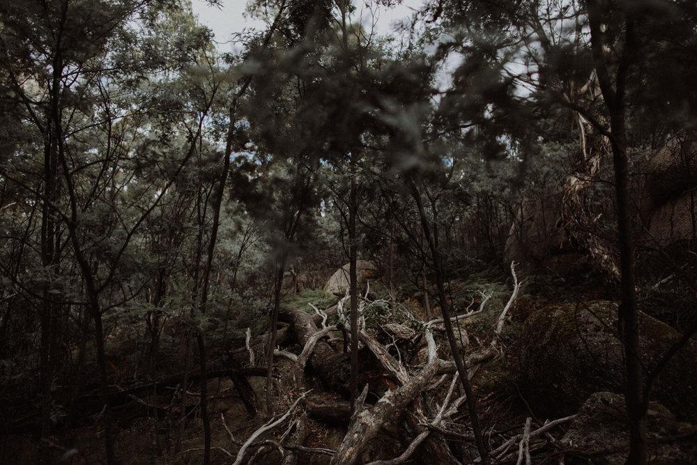 booroomba-rocks-engagement_007(4432).jpg