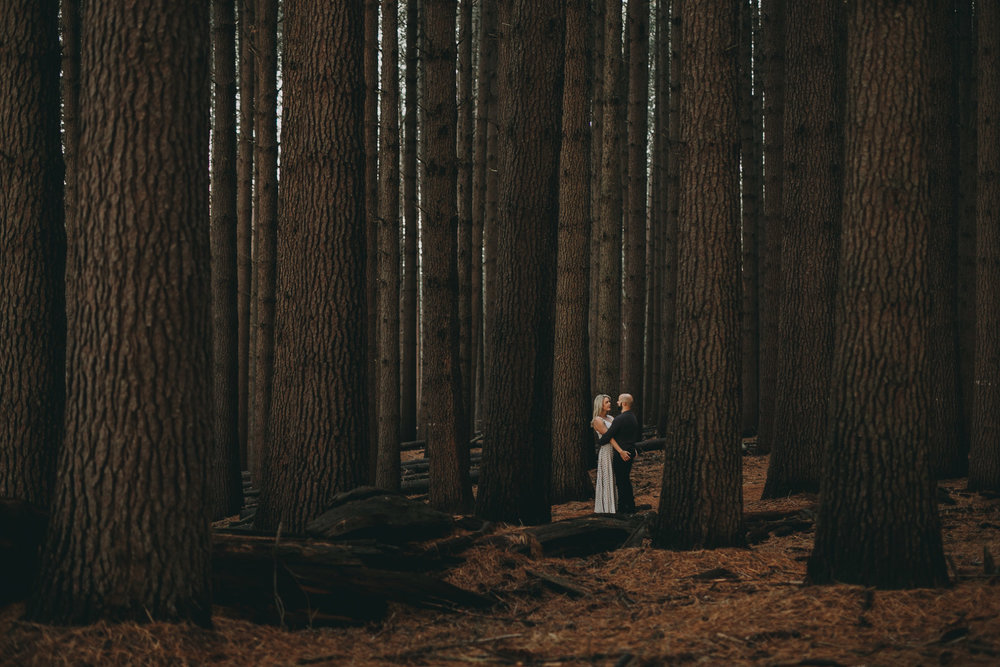engagement_lm_forest_019(8963).jpg