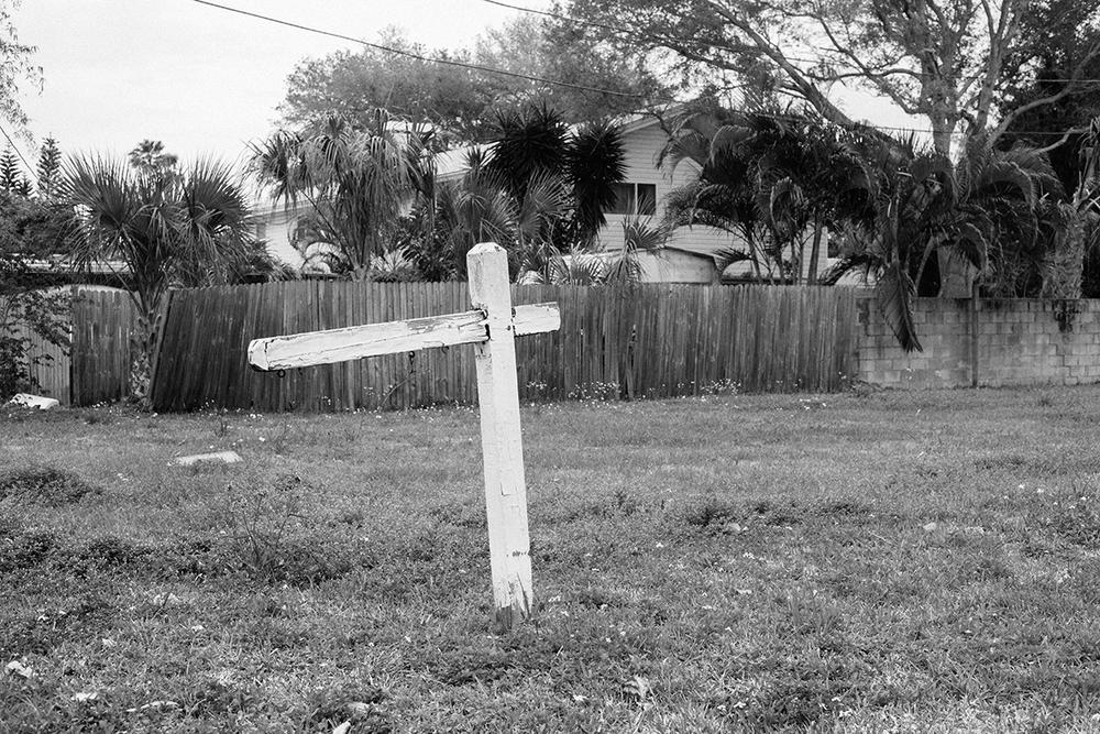 Florida, 2014