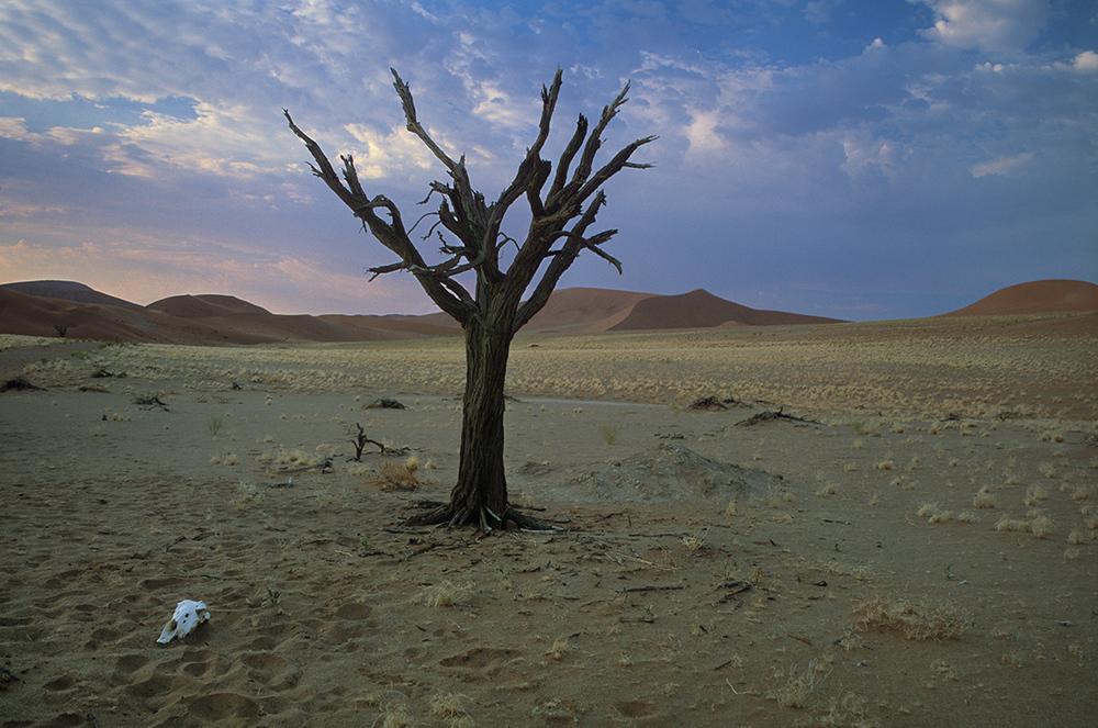 Hidden Vlei, Namibia