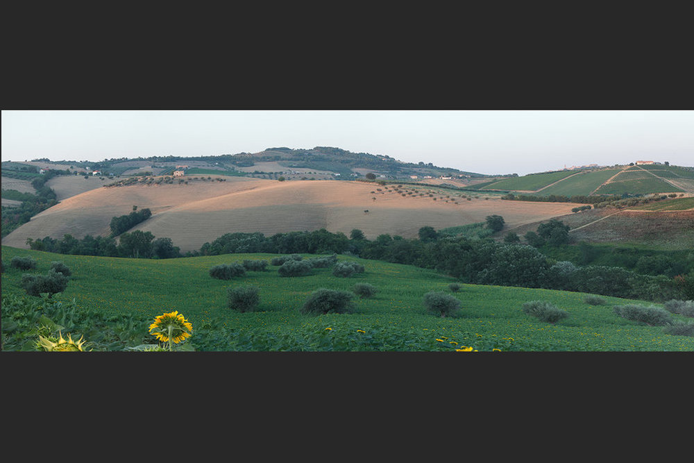 Villa+fields+Photomerge+3+FLAT1 23 2.jpg