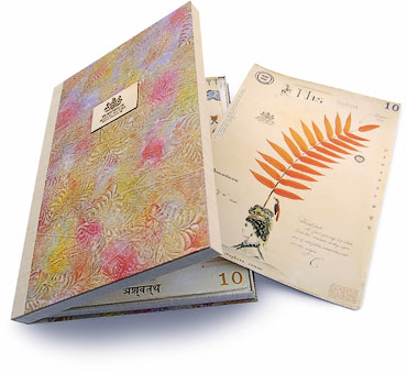 Above: This limited edition of three clamshell folios was commissioned by the Academy of Natural Sciences for their rare book collection, to document the show in 2012, Flora Fantastica: The Whimsical Botanical Art of MF Cardamone.