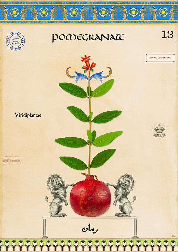 Symbolizes Fruitfulness - 36x24