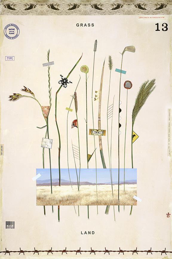 Grassland - 24x18